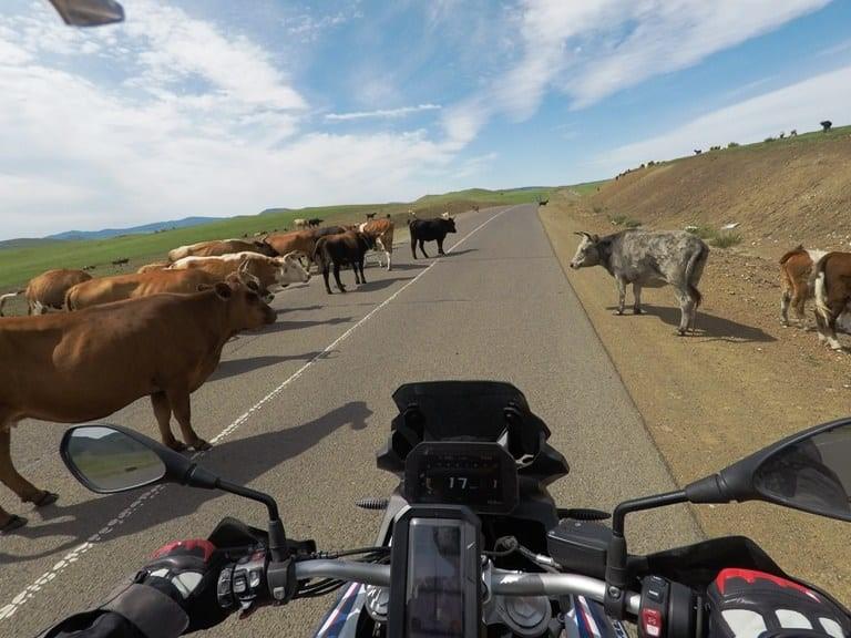 romania-motorcycle-tour